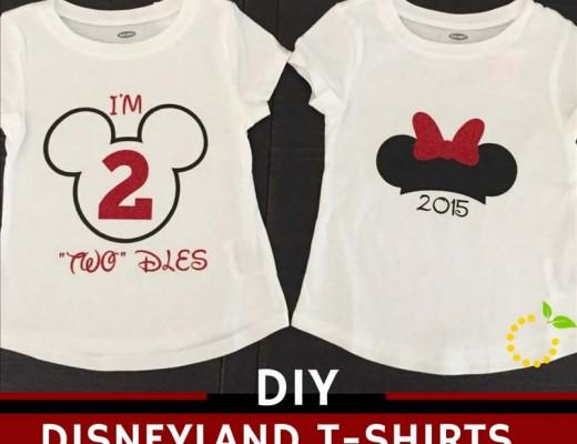 Disneyland T-Shirts sweetlemonmade.com