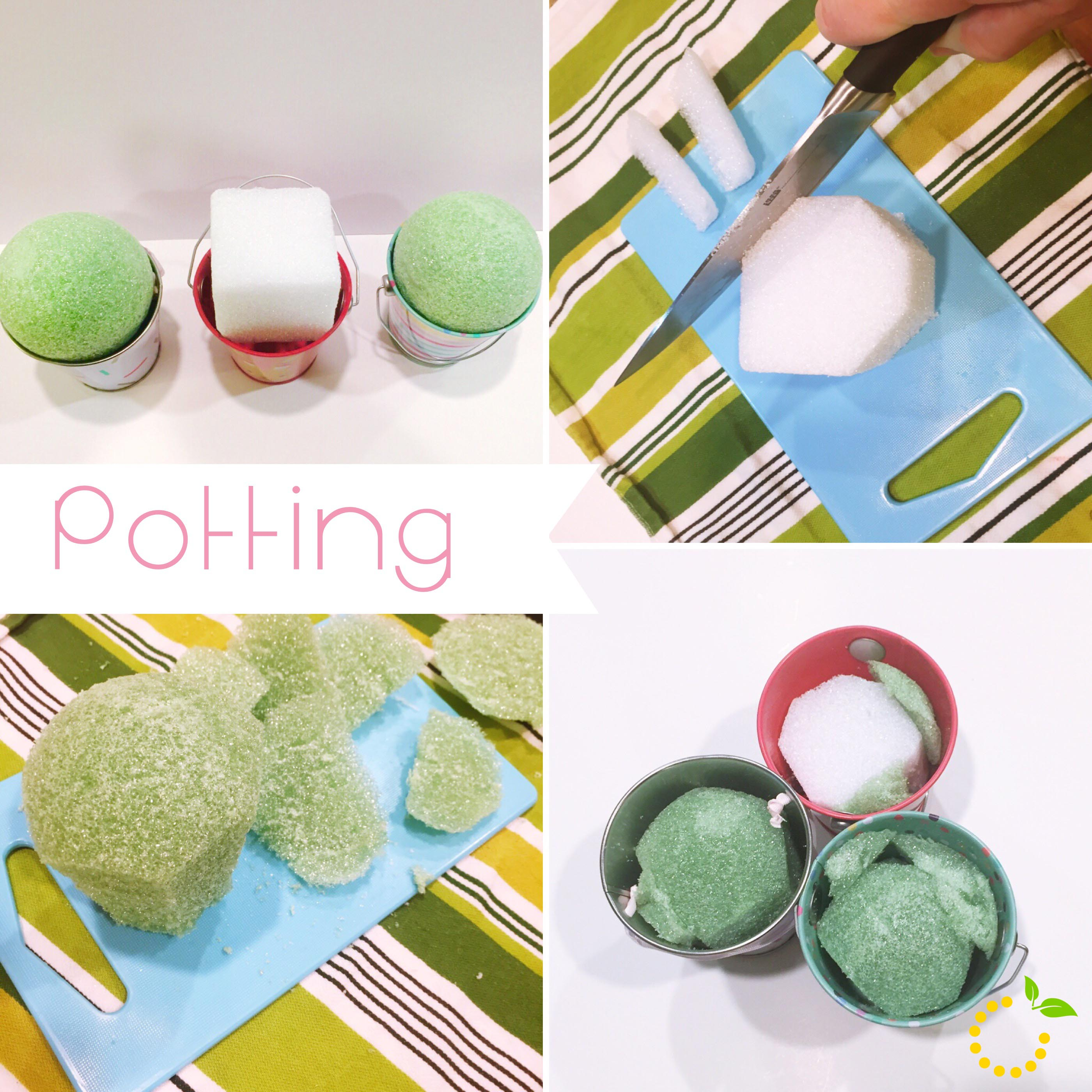 Cake Pop Potting sweetlemonmade.com