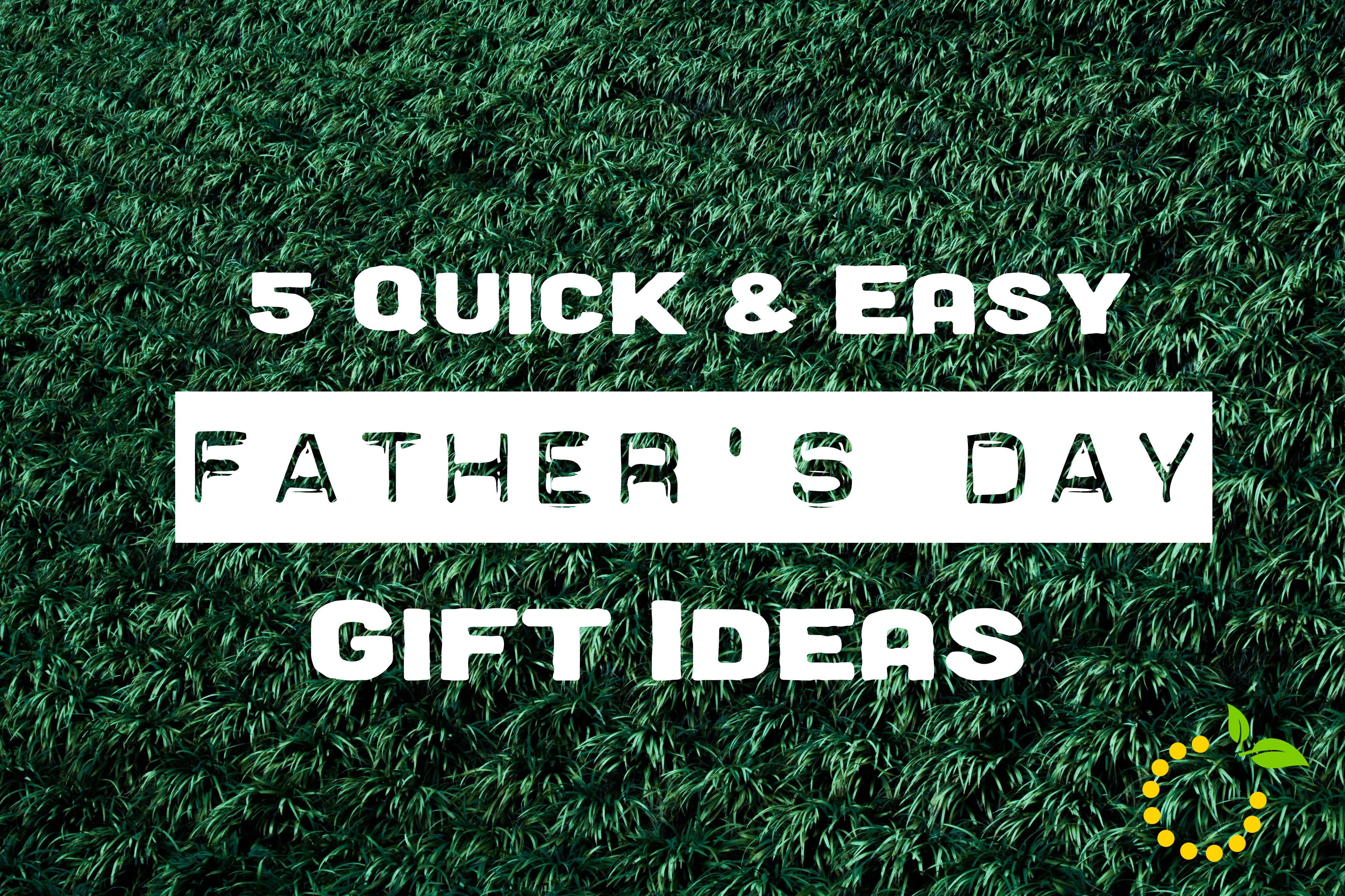 5 quick and easy father 39 s day gift ideas sweet lemon made for Quick easy gift ideas