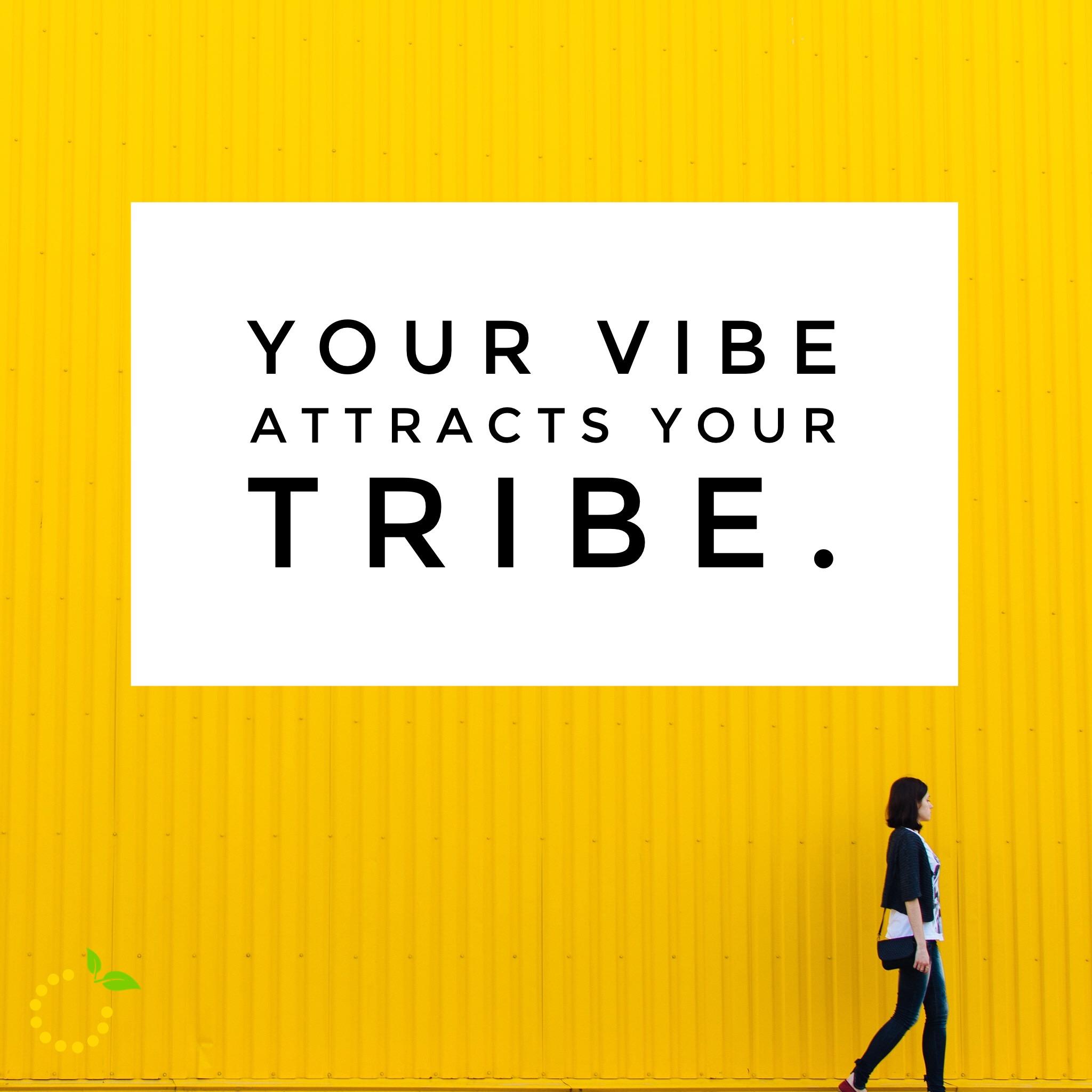 Tribe sweetlemonmade.com