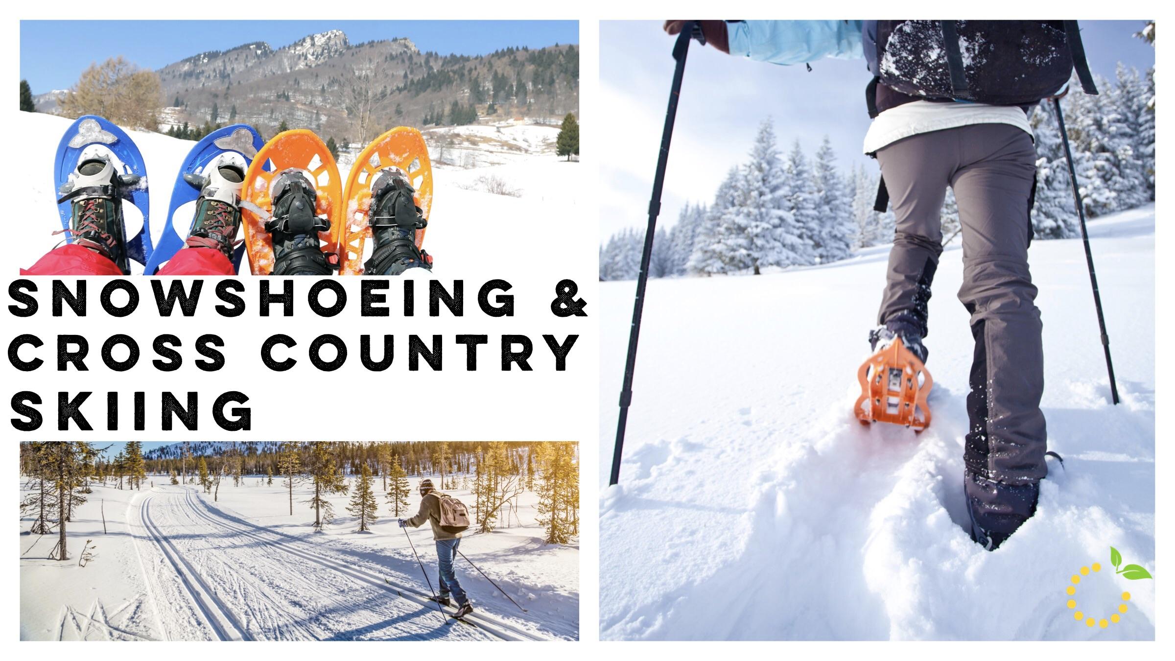 Snowshoeing sweetlemonmade.com