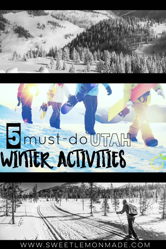 Winter Activities 2017 sweetlemonmade.com